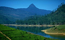 adams peak sri pada.jpg