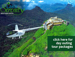 helicopter rides at lake serenity boutique hotel.