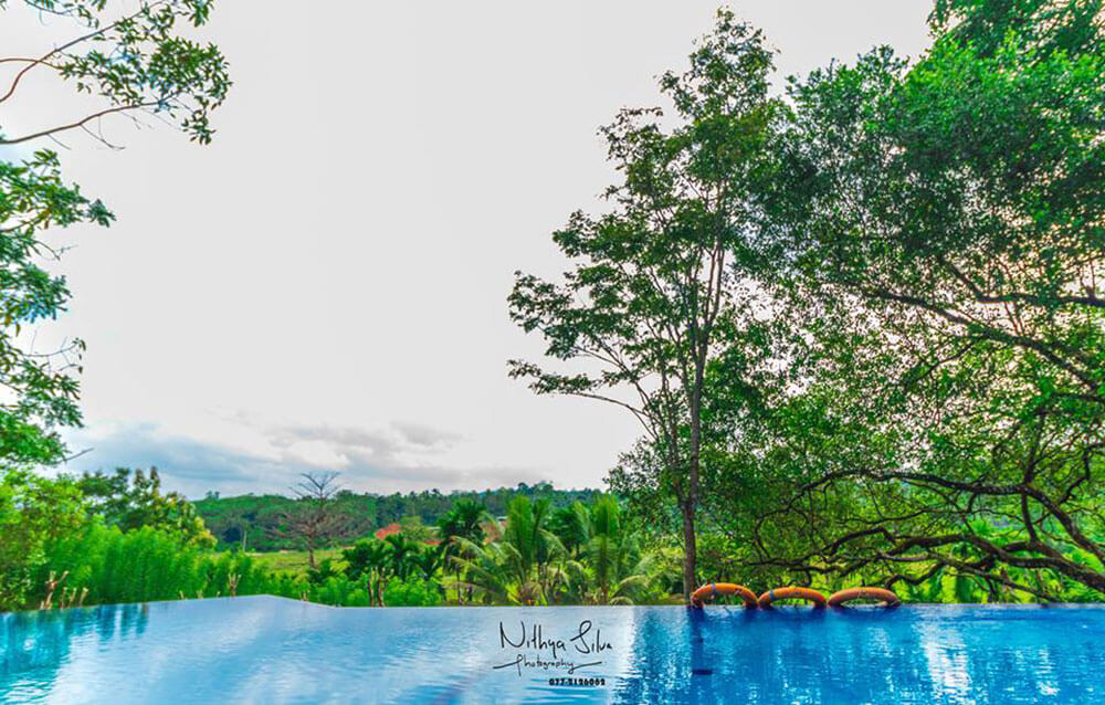 Outdoor Swimming pool with nature view