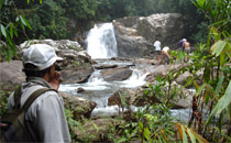 Sinharaja Forest Reserve-attractions in ratnapura